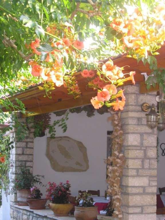 Stasinos Garden