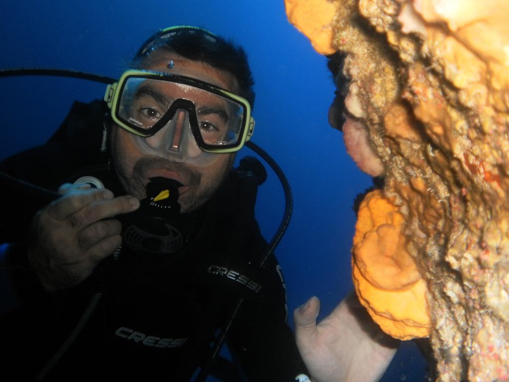 aqua reef 3