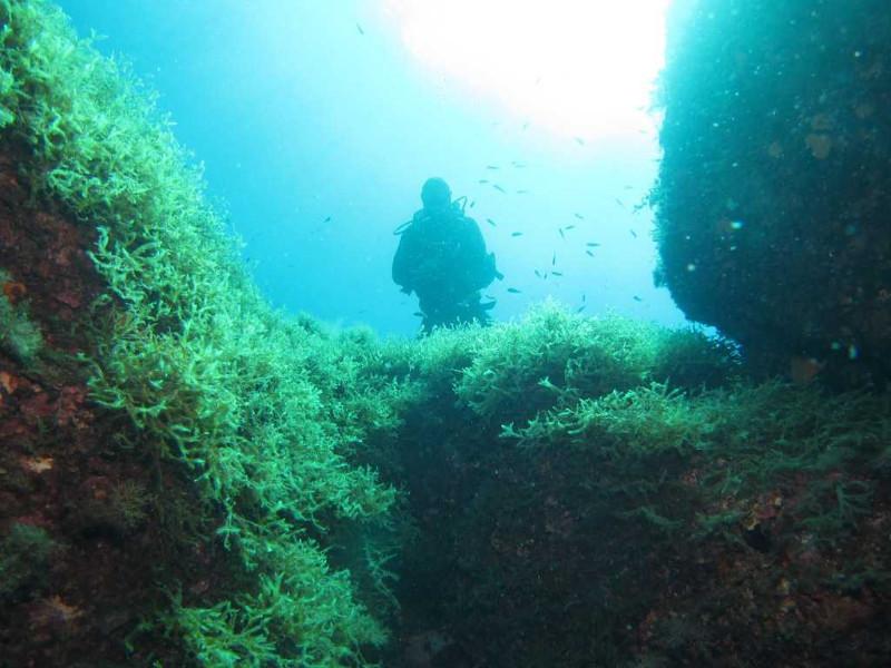 sub marine rock (4)