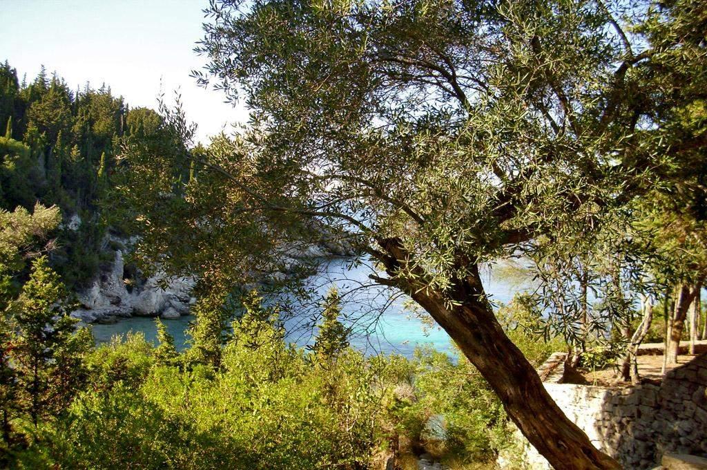 Lakkos Beach 09