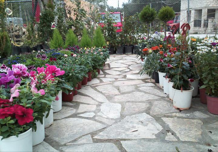 Garden Center Oneirokipos 02