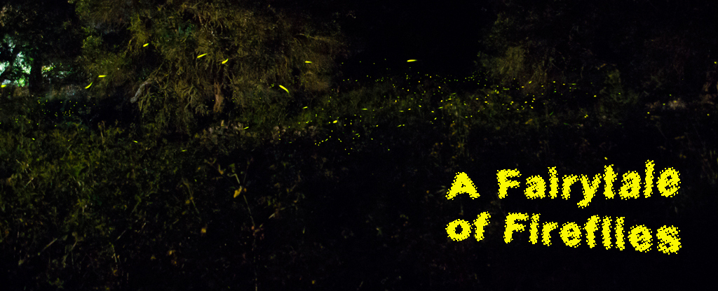 fireflies in paxos