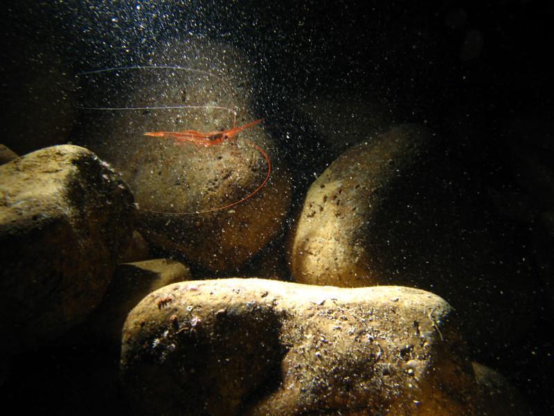 sunsine-cave-1